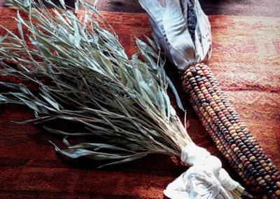 Shakapas (Bamboo & Indian Corn)